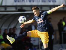 Youth-League-Finalist Ingolitsch wechselt an die Traisen