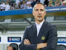 Für Adi Hütter wartet mit den Young Boys ein Auswärtsspiel in Kasachstan