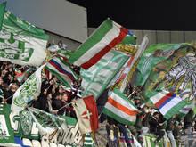 Die Rapid-Fans durften sich über ein tolles Finish freuen