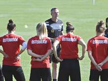 Trainer Dominik Thalhammer mit seinem EM-Team