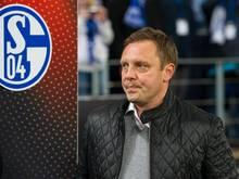 Schalke-Coach Andre Breitenreiter schiebt Bayer Leverkusen die Favoritenrolle zu