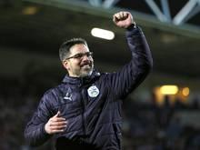 David Wagner schreibt seine Erfolgsgeschichte in Huddersfield weiter
