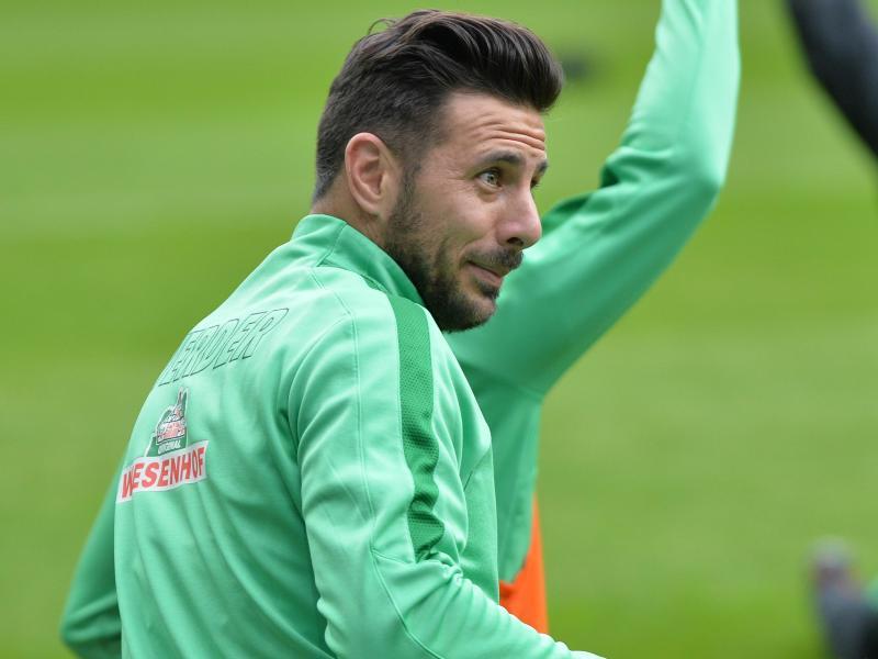 Claudio Pizarro wird Werder im Abstiegskampf fehlen