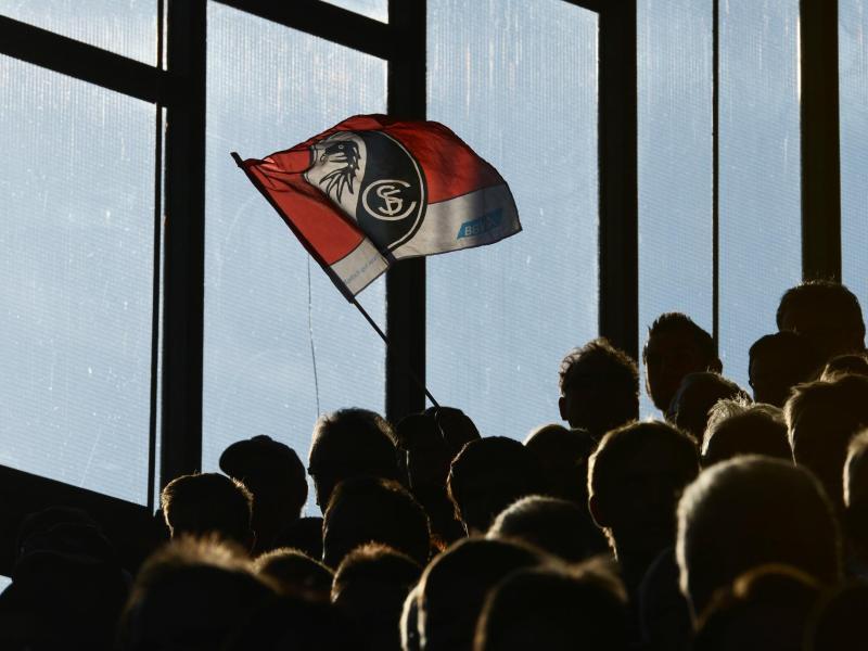 Der SC Freiburg trifft in der Qualifikation der Europa League auf den slowenischen Pokalsieger NK Domžale