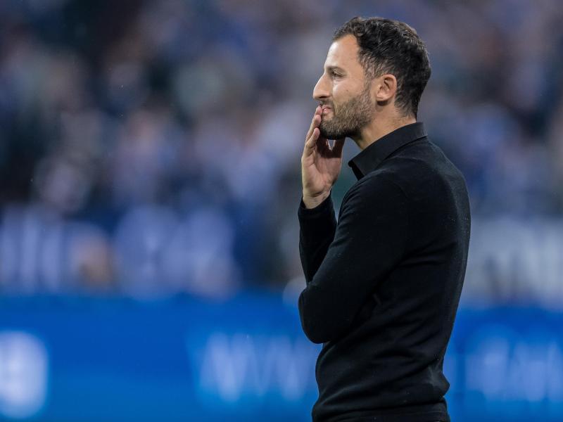 Schalkes Trainer Domenico Tedesco geht das Spiel gegen den Drittligisten Wehen-Wiesbaden mit dem nötigen Ernst an
