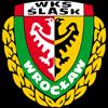 Śląsk Wrocław Herren