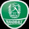 DHfK Leipzig Herren