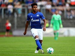 Weston McKennie hat beim FC Schalke verlängert