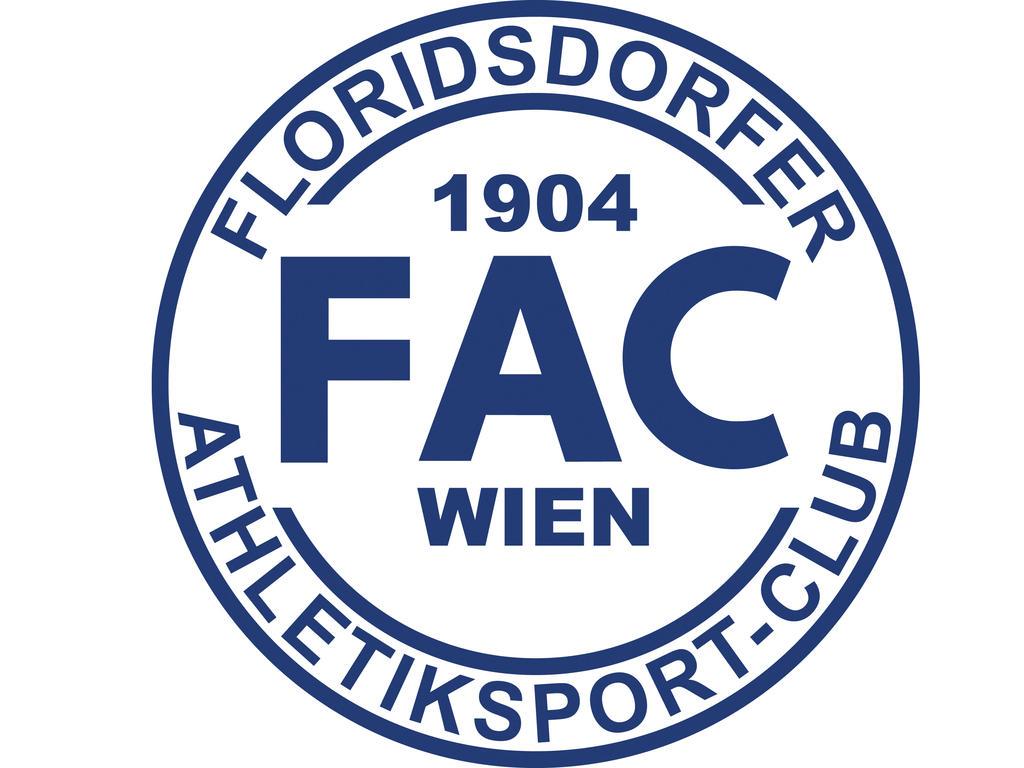 erste liga frankreich