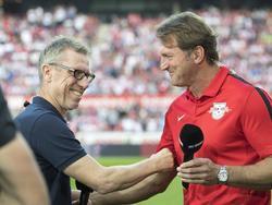 Peter Stöger und Ralph Hasenhüttl treffen am Samstag aufeinander