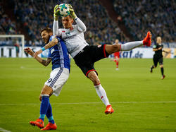 Guido Burgstaller (l.) gewann mit Schalke gegen René Adlers Mainzer