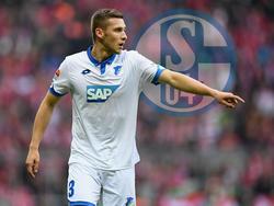 Hoffenheim-Verteidiger Pavel Kadeřábek ist beim FC Schalke 04 gefragt