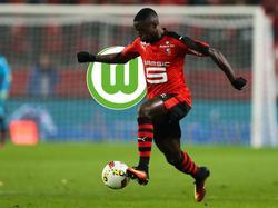 Paul-Georges Ntep könnte schon bald beim VfL Wolfsburg landen