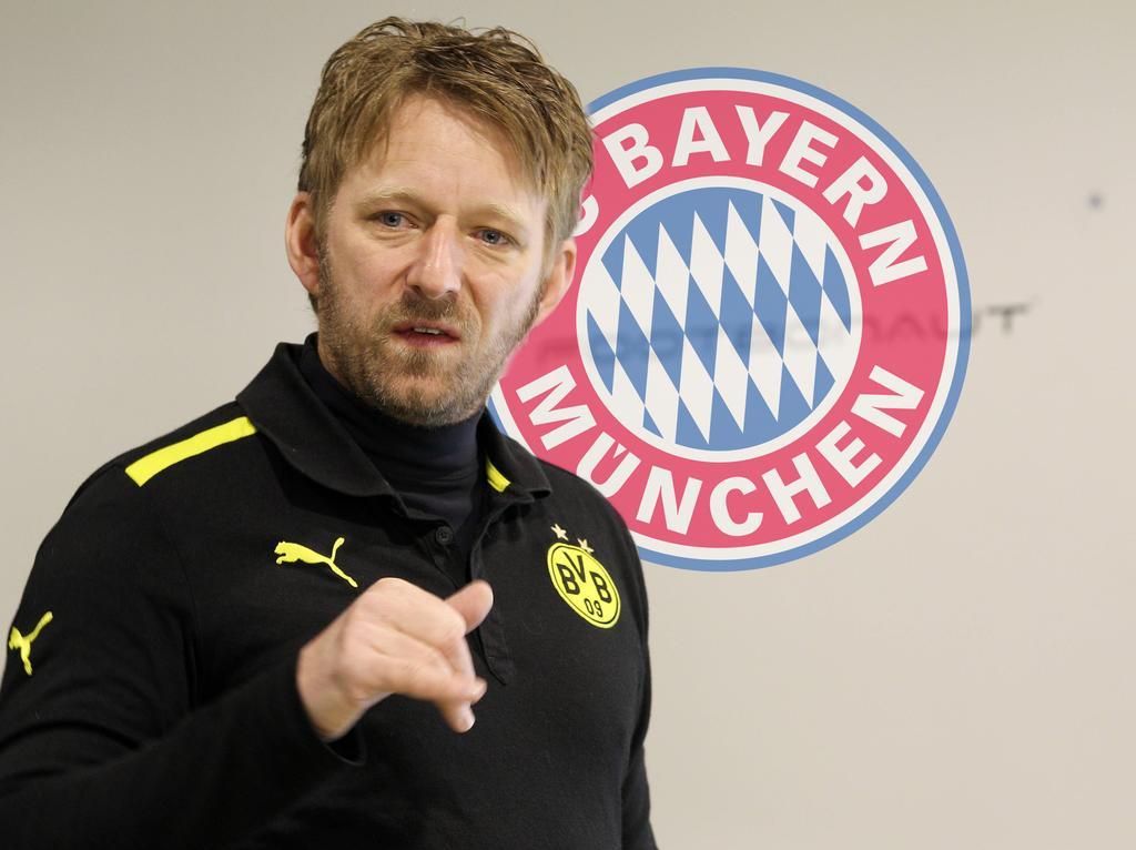 FC Bayern München will Dortmunds Talentspäher Sven Mislintat verpflichten