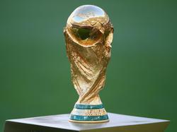 Die WM 2016 könnten in den USA, Kanada und Mexiko stattfinden