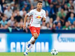 Bernardo wechselt von RB Salzburg zu RB Leipzig