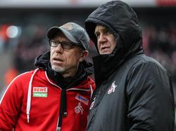 Peter Stöger (l.) stellt sich hinter FC-Sportdirektor Jörg Schmadtke