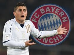 Die Bayern scheinen an Marco Verratti interessiert zu sein