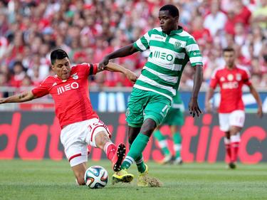 William Carvalho könnte Arsenal rund 45 Millionen Euro kosten