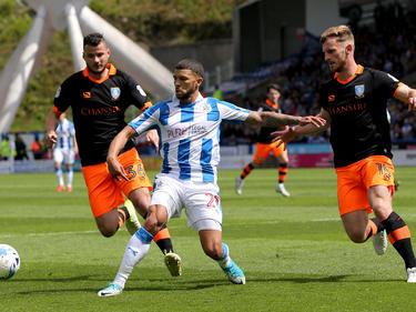 Huddersfield Town spielt um den Aufstieg in die Premier League