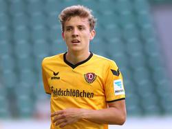 Niklas Hauptmann hat in Dresden verlängert