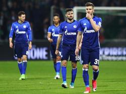 Schalke hofft auf einen Sieg in Wolfsburg