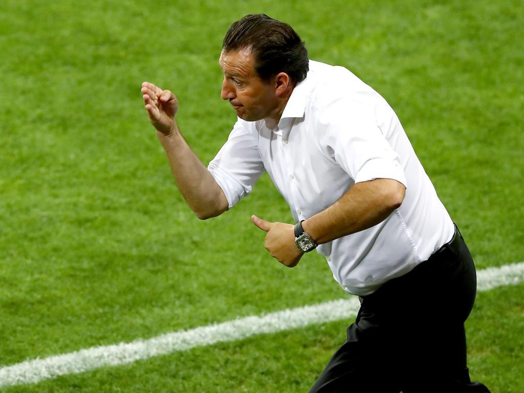 Wilmots wird neuer Trainer der Elfenbeinküste