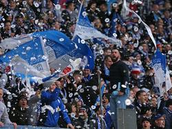 Die Fans von Hansa Rostock haben sich am Wochenende daneben benommen