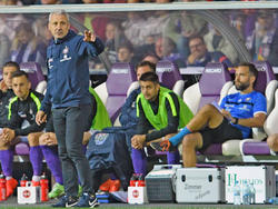 Trainer Pavel Dotchev dümpelt mit dem FC Erzgebirge Aue am unteren Tabellenende