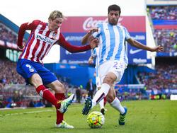 Fernando Torres und Atlético zeigen sich vor dem Spiel gegen Bayern vor ihrer gewohnten Seite