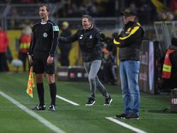 Peter Stöger und Julian Nagelsmann trafen am Samstag in Dortmund aufeinander