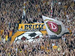 Dynamos Fans können über den nächsten Dreier jubeln
