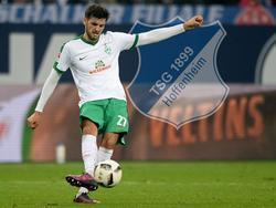 Florian Grillitsch schließt sich ab Sommer der TSG 1899 Hoffenheim an