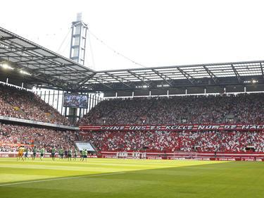 Auch Köln bewirbt sich als EM-Standort beim DFB