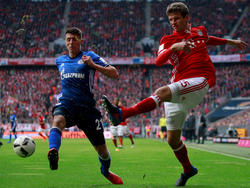 Der FC Schalke muss im Pokal-Viertelfinale in München ran