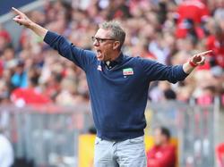 Peter Stöger stellt die Fitness seines Teams in den Fokus