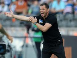 Pál Dárdai und Co. fiebern dem ersten Europa-League-Spiel entgegen