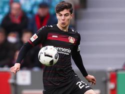 Kai Havertz soll beim FC Bayern auf der Wunschliste stehen
