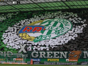 Die Farben grün-weiß verbinden: Nicht nur in Österreich