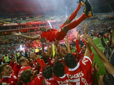 Kapitän Luisão wird von seinen Kollegen gefeiert