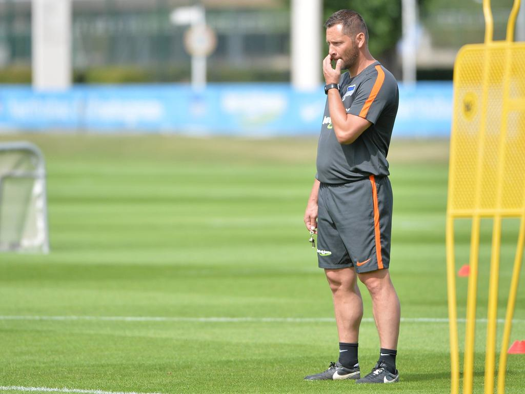 Pál Dárdai steht vor der neuen Saison vor einer anspruchsvollen Aufgabe