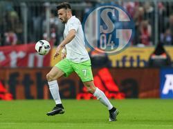 Wolfsburgs Daniel Caligiuri soll wohl zum FC Schalke 04 wechseln