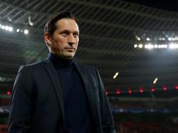 Roger Schmidt wird nicht niederländischer Nationaltrainer