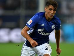 Schöpf schon sechster ÖFB-Export auf Schalke