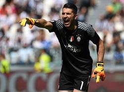 Buffon will endlich seinen ersten Champions-League-Titel