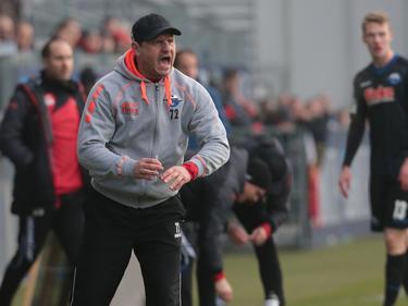 Der SC Paderborn kam im Spiel gegen Halle nicht über ein 0:0 hinaus