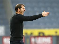 Franco Foda ärgerte sich über Referee Markus Hameter