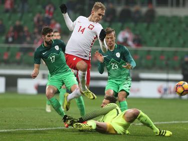 Łukasz Teodorczyk traf für Polen zum 1:1 gegen Slowenien