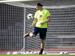 Aktuell bereitet sich Zlatan mit der schwedischen Nationalmannschaft auf die EURO vor