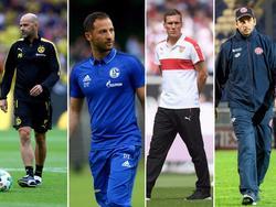 Vier Trainer stehen in der Bundesliga vor der Feuertaufe